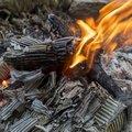 Fire 059