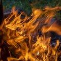 Fire 095