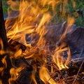 Fire 098