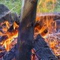 Fire 135