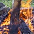 Fire 137
