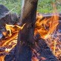 Fire 138