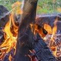 Fire 141