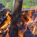 Fire 142