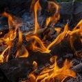 Fire 161