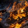 Fire 163