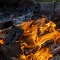 Fire 164