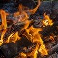 Fire 167