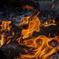 Fire 169