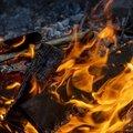 Fire 179