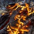 Fire 197
