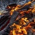 Fire 198