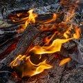 Fire 205