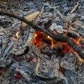 Fire 216