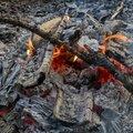 Fire 221