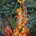 Fire 226