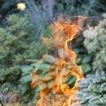 Fire 250