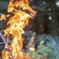 Fire 268