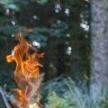 Fire 279