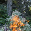 Fire 302
