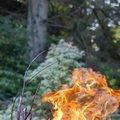 Fire 307