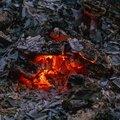 Fire 338