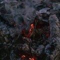 Fire 367