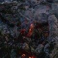 Fire 369
