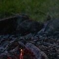 Fire 376