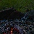 Fire 377